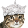:tinfoilcat: